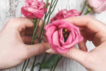 Một số cách cắm hoa tươi cơ bản