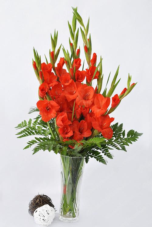 Lựa chọn một số loại hoa thường gặp 8