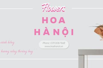 Lựa chọn một số loại hoa thường gặp