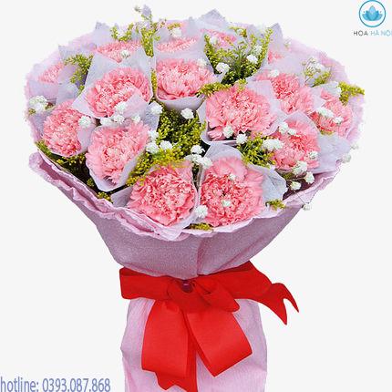 Hoa cẩm chướng 1
