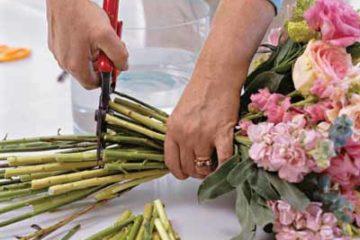 Kinh nghiệm cắm hoa tươi đơn giản
