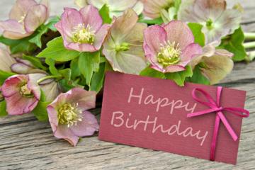 Cách chọn hoa tươi sinh nhật ý nghĩa cho bạn bè