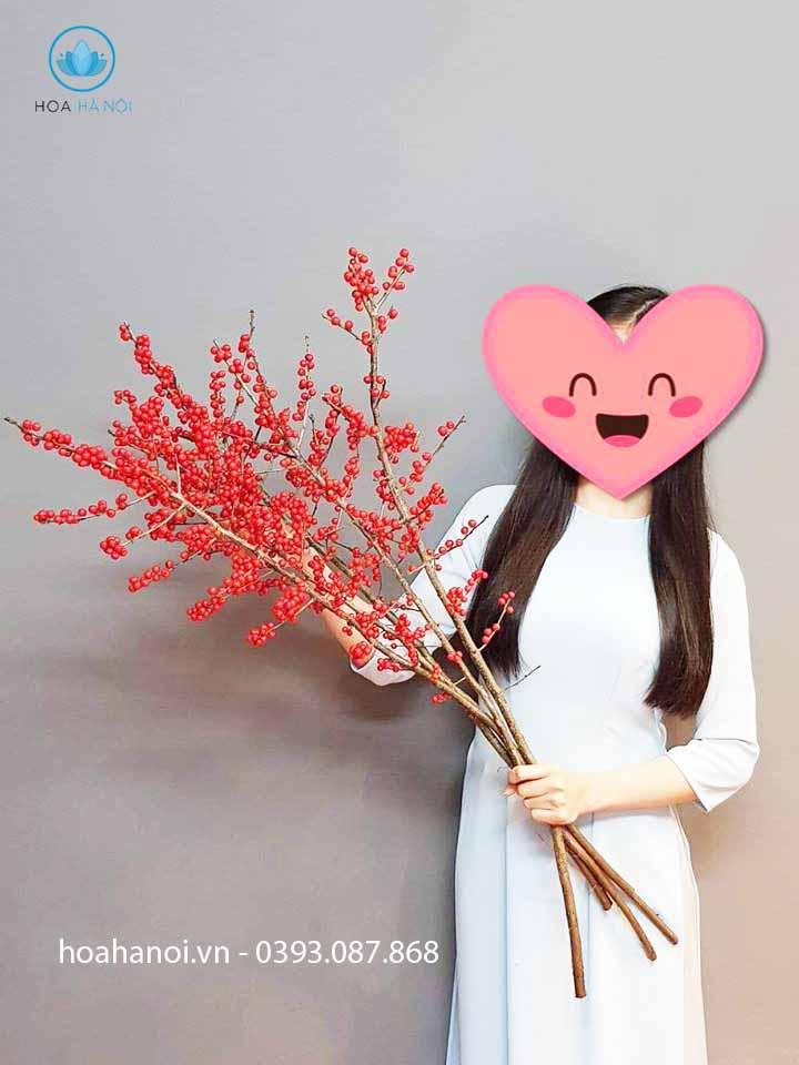 hoa đào đông đỏ