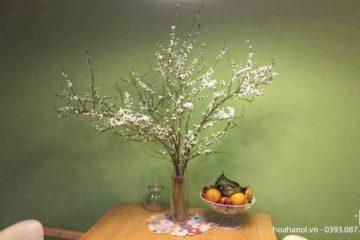 Cập nhật một số mẫu hoa tết tại điện hoa Nga's Flowers