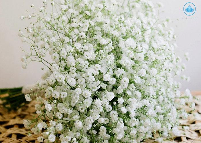 Ý nghĩa sâu xa đằng sau bó hoa cưới cầm tay cho cô dâu 4